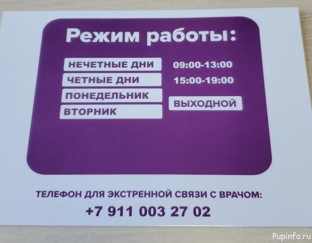 Медпункт Пупышево СНТ Рубин часы работы